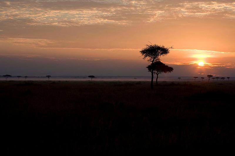 2007 07 27 Masai Mara 108