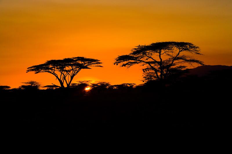 20100904_Samburu_147