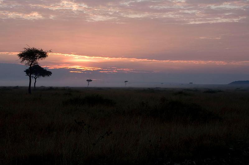 2007 07 27 Masai Mara 095
