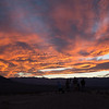 2016_10_15 Death Valley and The Joshua Tree-248