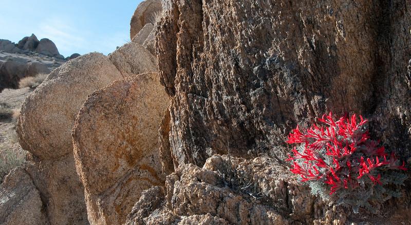 Foothold in Scarlet<br /> Alabama Hills, Eastern Sierras, California<br /> 2009