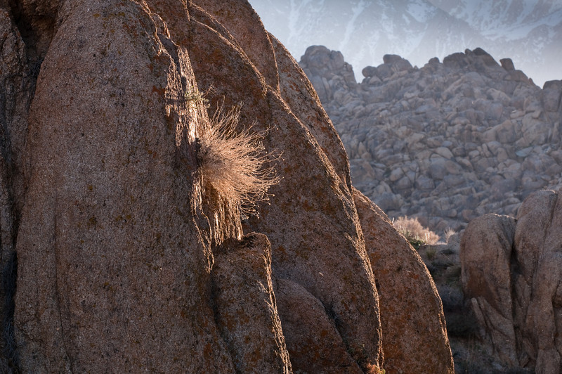 Afternoon Light<br /> Alabama Hills, Eastern Sierras, California<br /> 2009