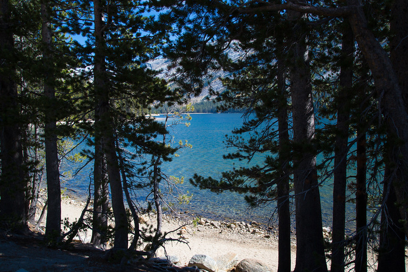 2016_10_13 Olmstead Peak & Lundy Canyon Aspens-56