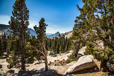 2016_10_13 Olmstead Peak & Lundy Canyon Aspens-15