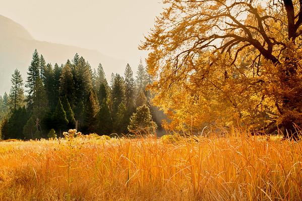 2016_10_13 Yosemite Valley Morning-98