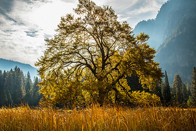 2016_10_13 Yosemite Valley Morning-72
