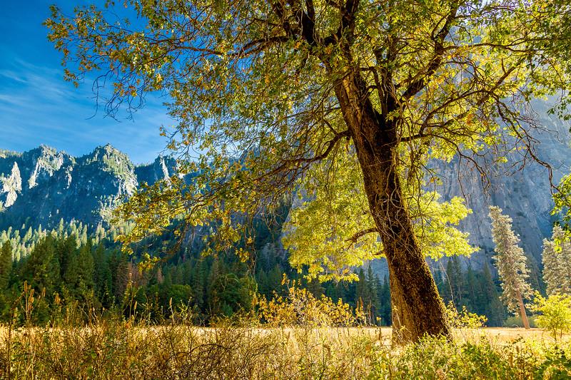 2016_10_12 Yosemite Valley Afternoon-2647