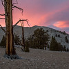 2016_10_14 Ancient Bristle Cone Forest Easter Sierras Sunset-4