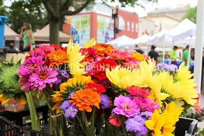 Easton Farmers' Market Saturday 8/2/2014