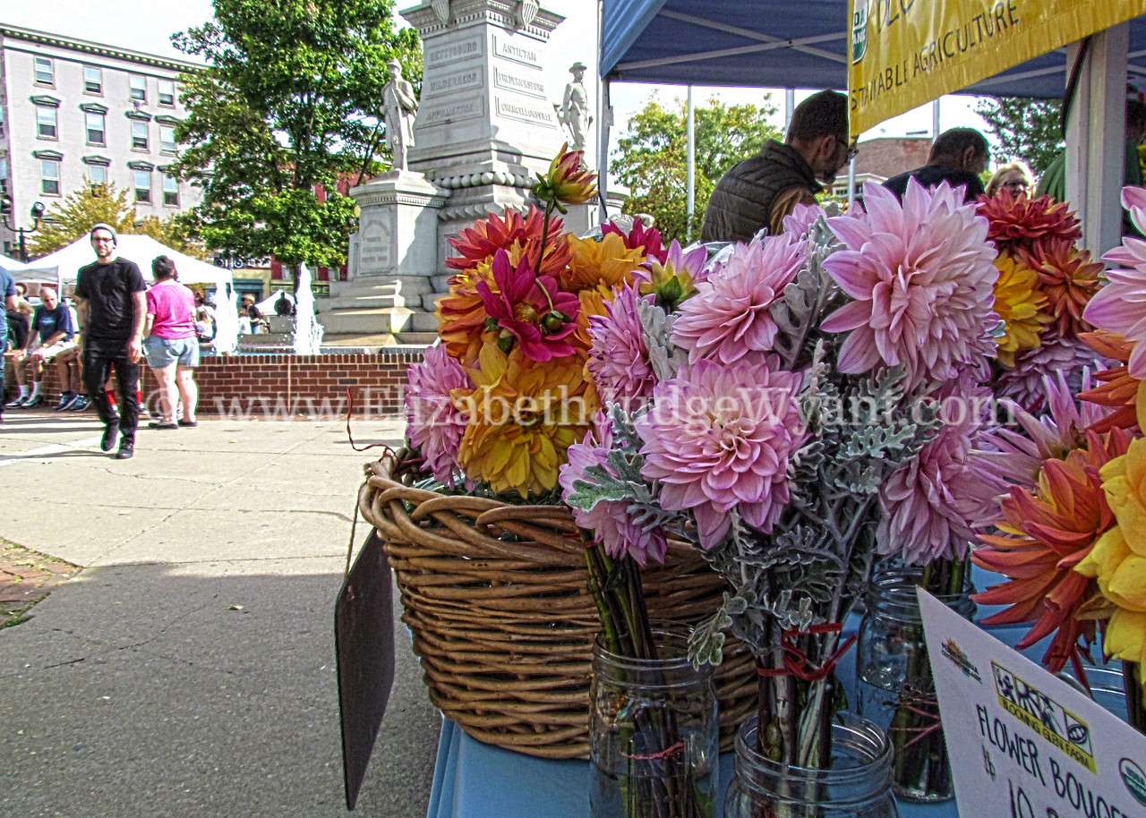 Easton Farmers Market 9/26/15