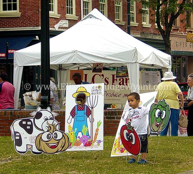 Easton Farmers Market 8/13/2010