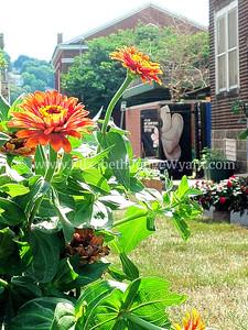 Compost garden center. 7/14/2012