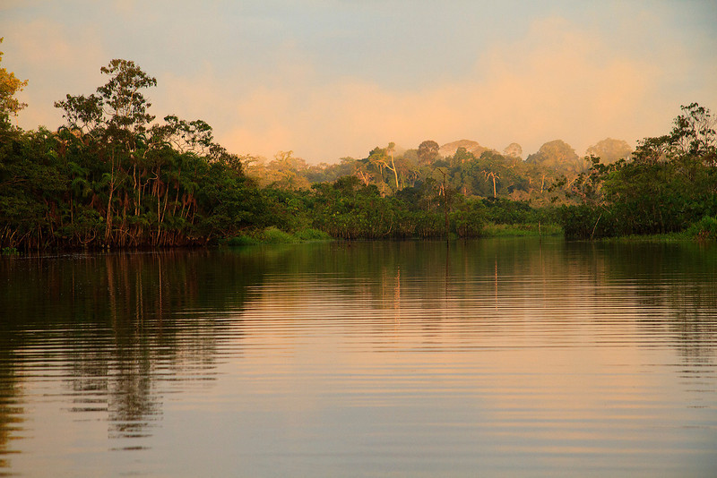 Sunrise in Challuacocha, the magic wetlands preserved by the Sani Isla Kichwa community.
