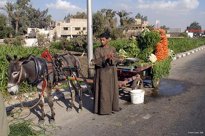 Cairo in & around