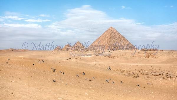 Giza-24