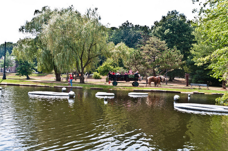 Horse drawn wagon tour of Art in the Park