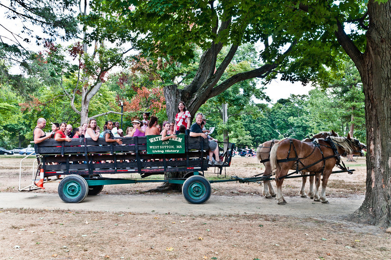 Horse drawn wagon tour of Art in the Park<br /> <br /> Tour guide: Helen Beaumont