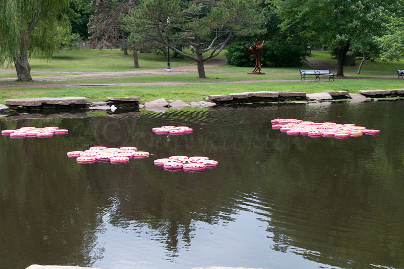 Adopt-a-Sculpture, ReinCARnation Hubcap Lily Pads by Nora Kell in Memory of Thomas H Kell