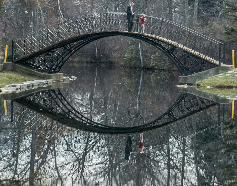 Bridge at Elm Park