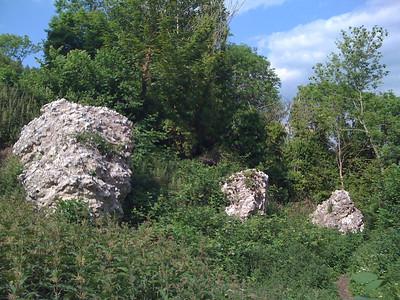 Castle remnants