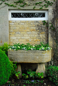 Stone trough turned planter in an english garden - Upper Slaughter, England