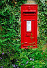 Red English post office box surrounded by ivy and greenery - Hidcote-Boyce, England