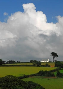 White cottage, hedge rows and a solitary tree - St Just, Cornwall, England