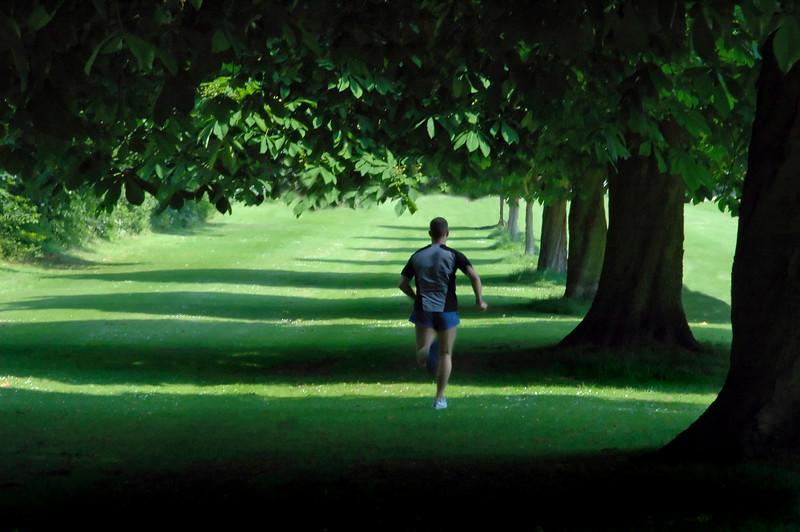 Man running on green grassy lawn through shadows cast by a symmetrical row of tall leafy trees