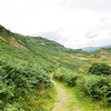 Winding trail in the Lake District