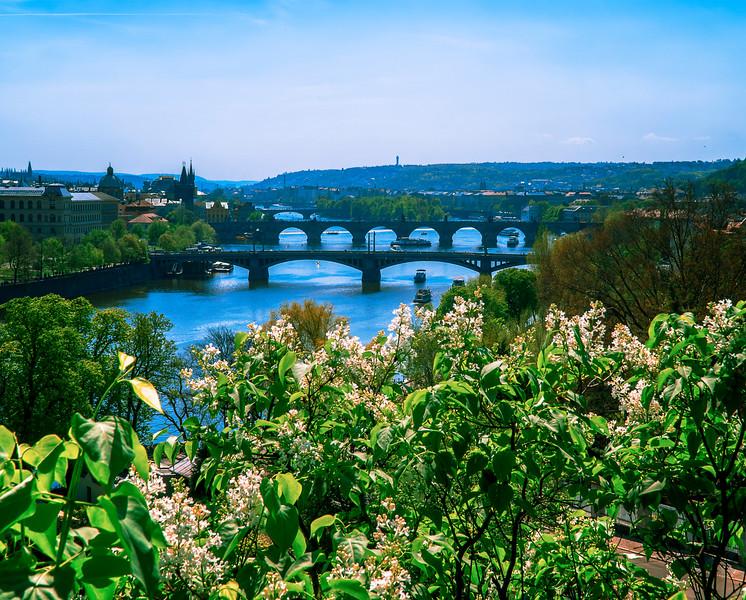 Vltava river from Royal Garden