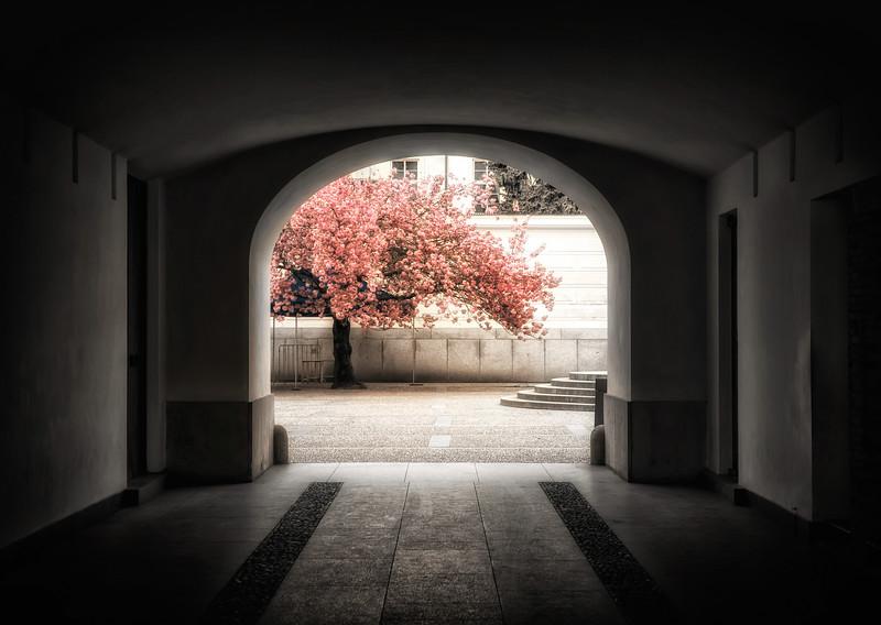 inner castle courtyard