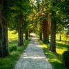 Roquetaillade path