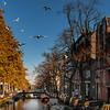 canal flight