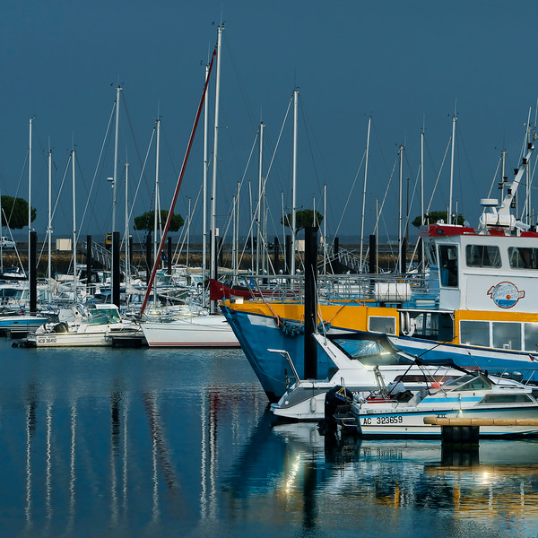 at Port Arcachon