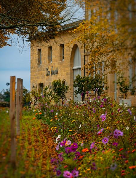 vinyards and gardens abound