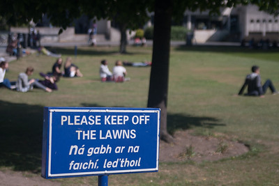 A universal university headache; students who don't follow directions!  Trinity College, Dublin.,