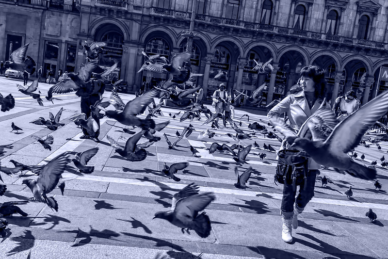 Pigeons in the Duomo plaza