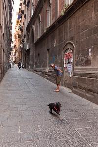Fetch, Napoli