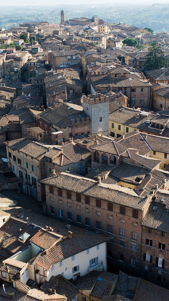 Roof tops, Siena viewed from Torre del Mangia