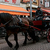 "I'm not sure how ""romantic"" Amsterdam by day is, but these carriages gave it a shot."