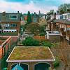 hello rooftops