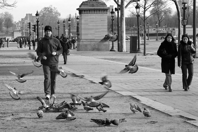 "Greg stirring up trouble with the local pigeon population as we passed the Place de la Revolution and headed down the Avenue des Champs-Elysees.<br><br><span class=""subcaption"">Used PS channel mixer to produce more vivid black and white.</span>"