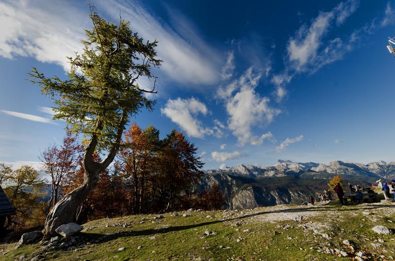 Mt Vogel