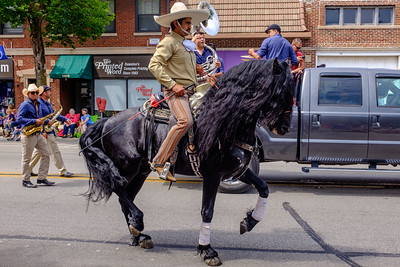 Mexican horse rider, fancy prancing horse
