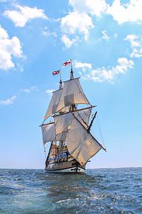 Mayflower Returns-23