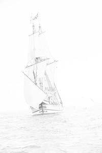 Mayflower Returns-15