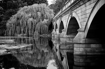 The Serpantine Bridge