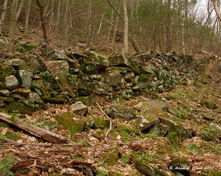 Stone Wall on the route of the never completed inclined railroad.  This stone wall was just over 7 ft tall in the section