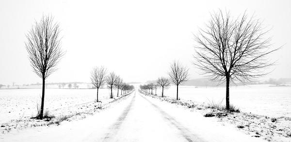 Wintery Lane (C) Bill Hiskett