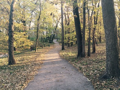 fall colors 2015